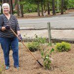 Sandhills Woman's Exchange Barb in new garden