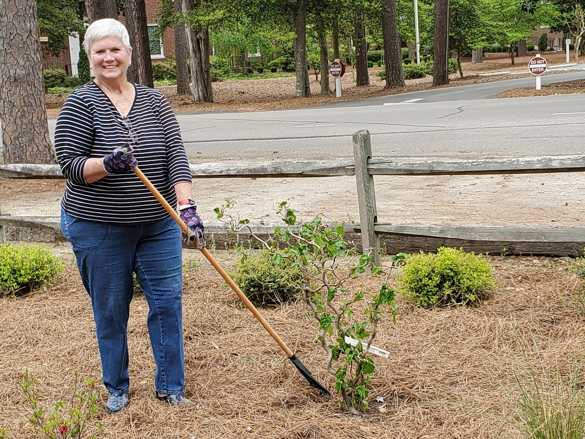 Sandhills Woman's Exchange Barb in new garden